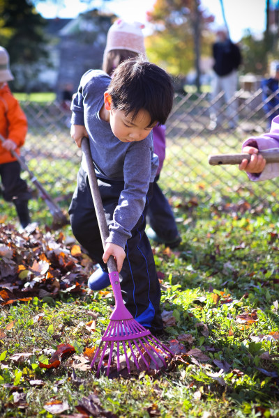Raking the Leaves at Kinderhaus